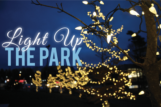 light up the Park Picture