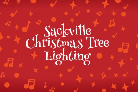 Tree Lighting in Sackville NS