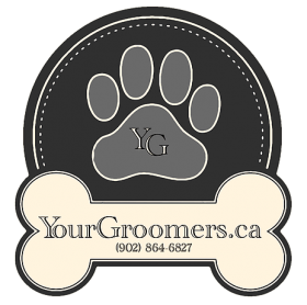 Your Groomer